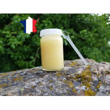 Pot de gelée royale française sélection Les Miels d'Uzès